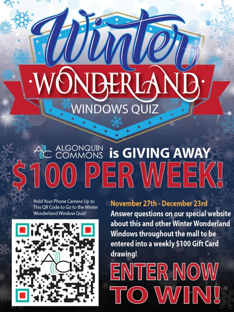 Winter Wonderland Windows Quiz